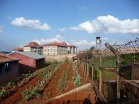 Vegetable gardens and barbed wire fence at Langata Women's Prison in Kenya