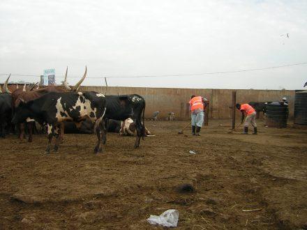 Community Service, Market, Kampala Uganda January 2013